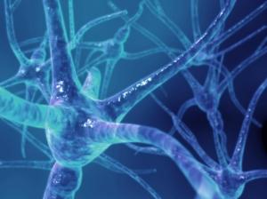 esclerose-multipla-5