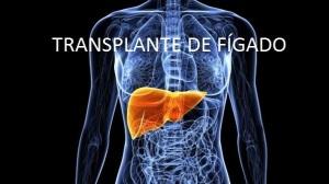figado-figado-20110608-size-598
